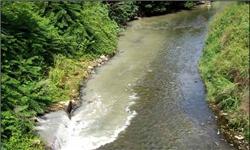گزارشی در مورد آلودگی رودخانه های گوهررود و زرجوب-آلوده ترین رودخانه های جهان
